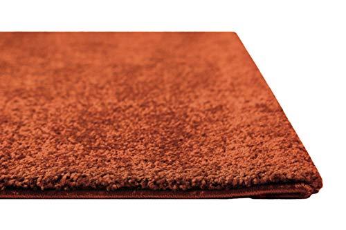 Homie Living Kurzflor Teppich für Wohnzimmer, Flur, Schlafzimmer und Kinderzimmer in schönen modernen Farben LIDO (80 x 150 cm, Terracotta)