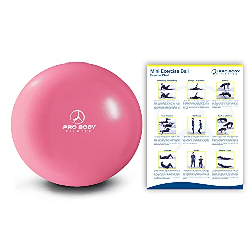 ProBody Pilates Ball Workout Ball - 9 Inch Mini Physical Therapy Ball for Stability, Barre, Yoga, Bender, Balance, Core Training, Recovery Small Exercise Ball for Between Knees (Pink)