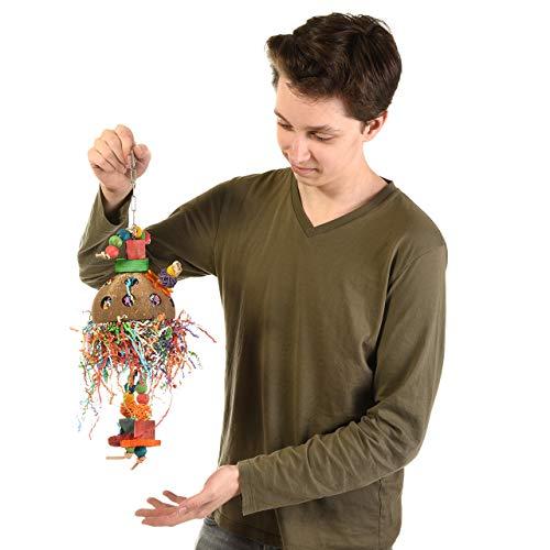 Wagner's | Coconut-Jelly-Delly mit Edelstahl Kette, Papageienspielzeug, Spielzeug für Papageien