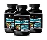 Memory Vitamins Brain for Women - ASHWAGANDHA Root Premium 4:1 Extract - ashwagandha bulksupplements - 3 Bottles 360 Capsules