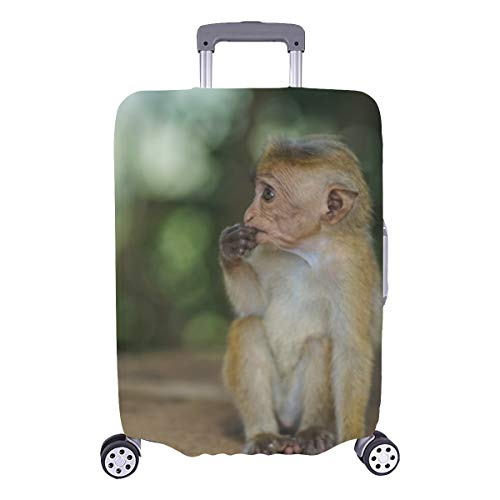Luggage Hard Cover Petite And Pleasant Finger Monkey Durable Washable Protecor Cover Fits 28.5 X 20.5 Inch Best Luggage Cover Kids Luggage Cover Protective Luggage Cover