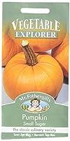 英国ミスターフォザーギルズシード&ジョンソンシード Vegetables Explorer ベジタブル・エキスプローラー Pumpkin Small Sugar パンプキン・スモール・シュガー