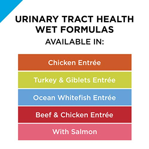 Purina Pro Plan Urinary Tract Health Gravy Wet Cat Food, FOCUS Urinary Tract Health Formula Chicken Entree - (24) 3 oz. Pull-Top Cans