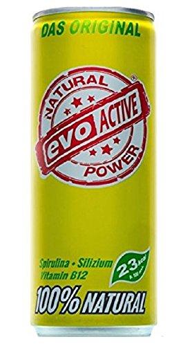 Evo Active Natural Power, Dosen, Kokoswasser, Ingwer und Limette, 24er Pack (24 x 250 ml)