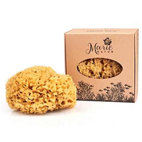 Marie Natur Éponge naturelle de 14 cm - Sans plastique - Éponge de bain naturelle de la Méditerranée - Qualité supérieure.