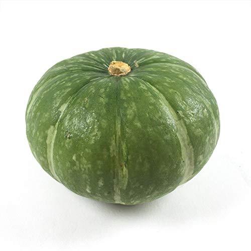 ムソーの安心野菜 鈴かぼちゃ 1個 減農薬 冷蔵