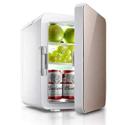 ANJIN Mini koelkast voor auto en thuis, DC12 V/AC220 V 10 L draagbare thermo-elektrische koelbox/verwarmingsbox voor reizen camping (goud)
