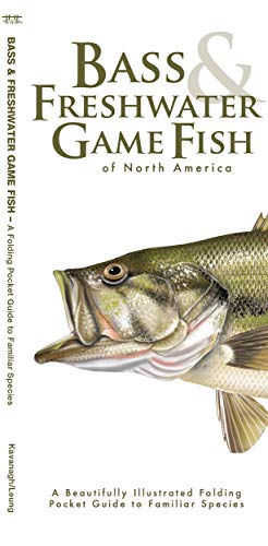 Bass & Freshwater Game Fish: A Folding Pocket Guide to Popular North American Species (Pocket Naturalist Guide)