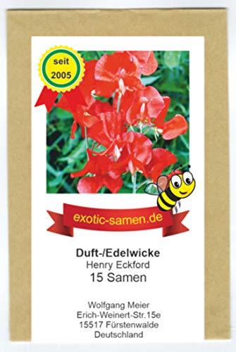 Duftwicke - Edelwicke - Bienenweide – Henry Eckford bis 180 cm - 15 Samen