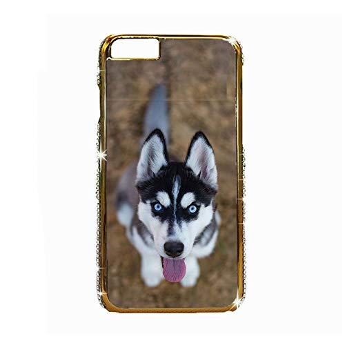 Child Phone Case Abs Lovely Compatible Apple iPhone 6P 6Ps 5.5Inch Have Siberian Husky 4 Choose Design 131-1
