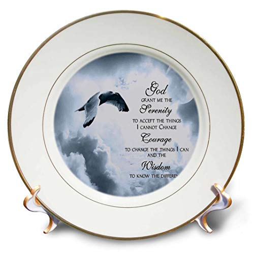3dRose cp_52227_1 The Serenity Prayer A Beautiful Dove One of A Kind Graphic Will Inspire All-Porcelain Plate, 8-Inch