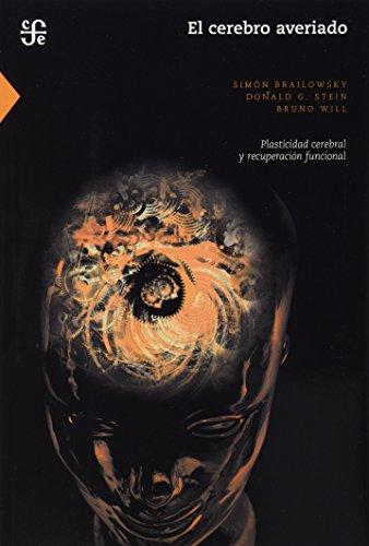 El Cerebro Averiado: Plasticidad Cerebral y Recuperacion Funcional (Seccion de Obras de Ciencia y Tecnologia)