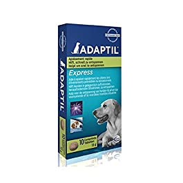ADAPTIL Express Tablets, fast calming for anticipated events such as thunderstorms, vet visits, groomers and fireworks – Pack of 10 tablets