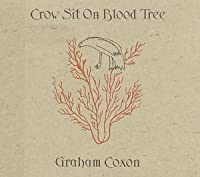 Crow Sht on Blood Tree by Graham Coxon (2008-01-13)