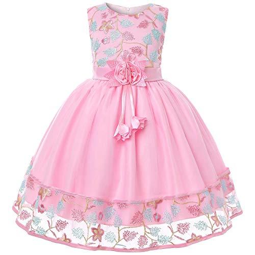 Cichic Mädchen Kleider Partei Kleider Elegant Kinder Prinzessin Kleid Kinder Hochzeits Geburtstag Kleid Blumenmädchen Formale Kleid 2-10 Jahre (5-6 Jahre, Rosa Stickerei)