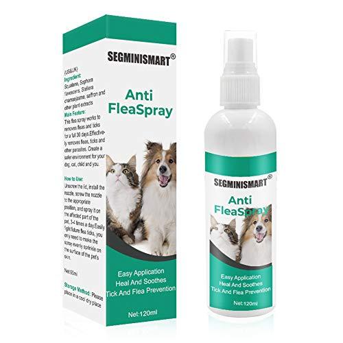 SEGMINISMART Spray Pulci,Spray Antipulci per Cani,Antipulci Spray Cani e Gatti,Flea Spray,Spray antipulci Gatti,Repellente per pulci ingrediente Naturale per Cani Gatti Pulci Zecche Pidocchi