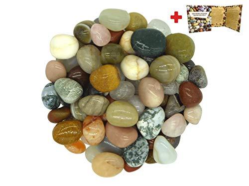 Rokkolino Bunte Mischung aus natürlichen Trommelsteinen in verschiedenen Größen - 900 Gramm | Ideal für Kinder, zur Dekoration, als Heilsteine & Handschmeichler, Edelsteinspiele UVM.