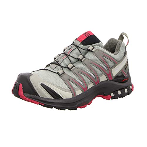 Salomon Women's XA Pro 3D GORE-TEX Trail Running Shoes, Shadow, 5.5 M US