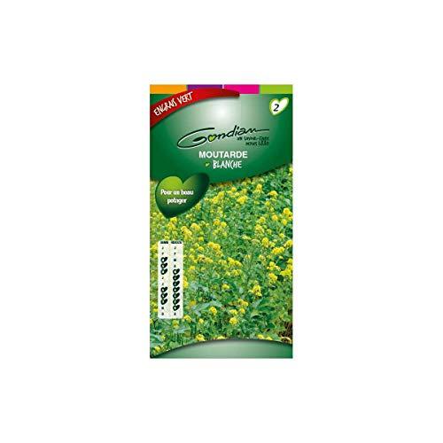 gondian - Moutarde blanche Engrais vert 100gr 100m²