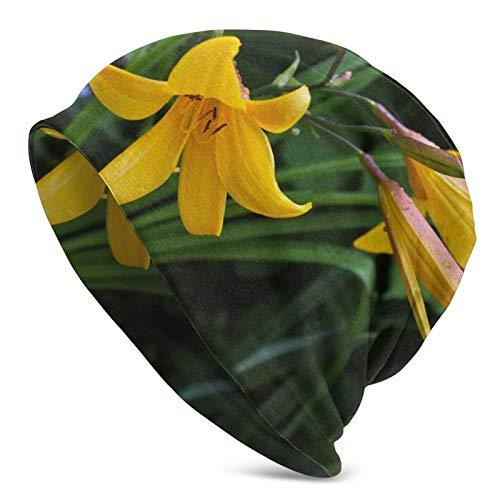 BGDFN Fragrant Flower One Knit Hat Gorros cálidos Beanie Gorros elásticos Suaves con puños de Calavera Gorro Diario para Unisex Negro