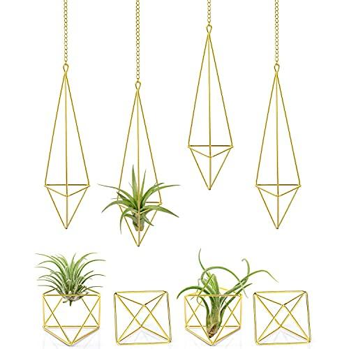 BOINN 8 Pack Luft Pflanzen Halter Metall Himmeli Dekor Moderner Geometrischer Pflanzer, Luftpflanzen Rack Tillandsia AufhhNger, Luft Fern SttNder