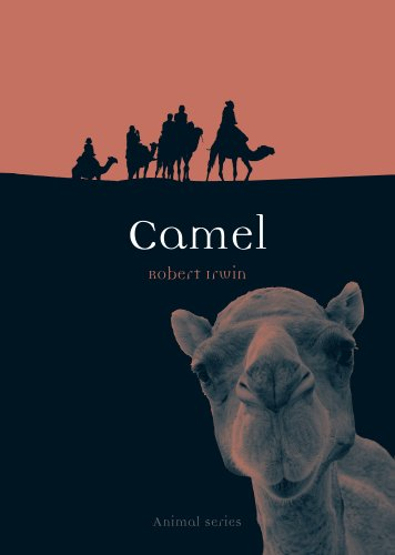 Camel (Animal) (English Edition)