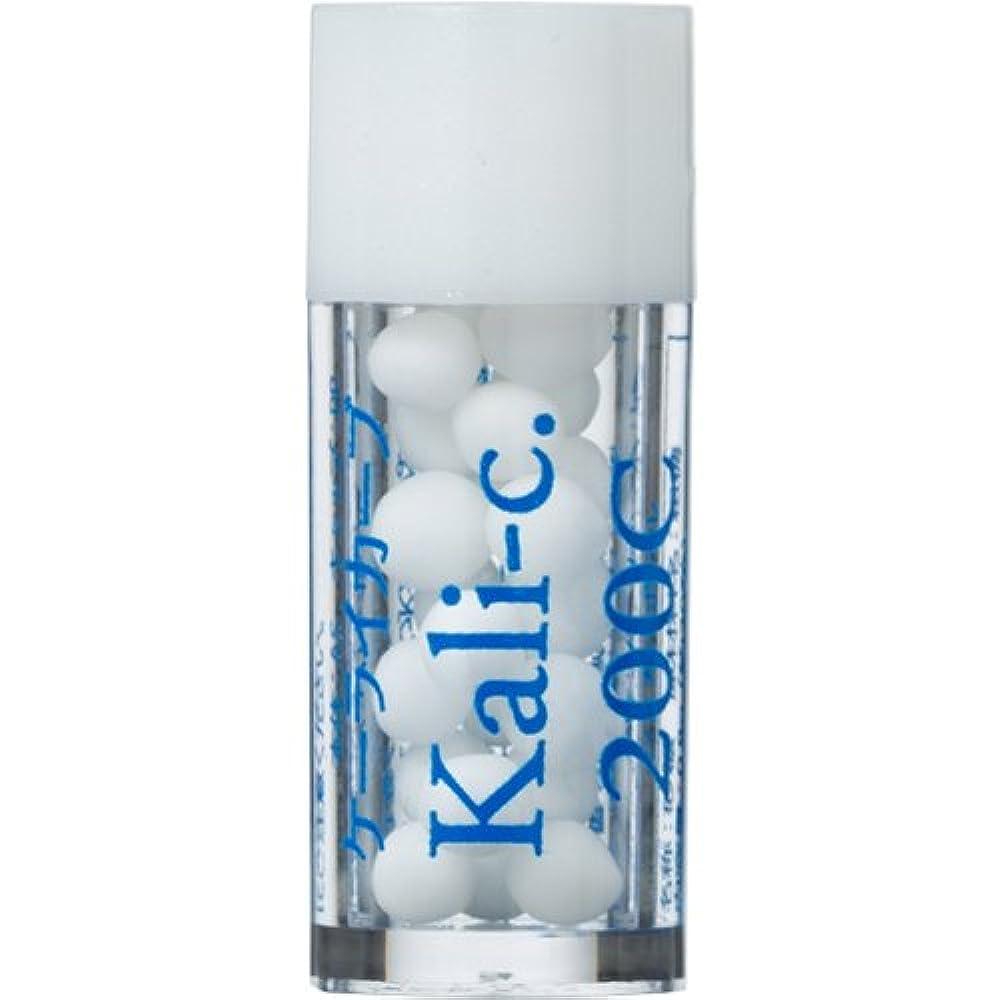 にじみ出る増加する忠実なホメオパシージャパンレメディー バース14 Kali-c.ケーライカーブ 200C