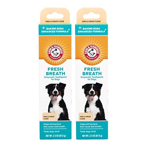 Arm amp Hammer Fresh Breth Enzymatic toothpaste for DogsVanilla Ginger 25 oz Pack of 2