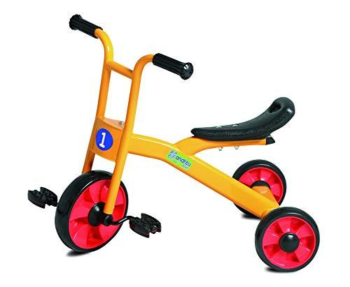 Andreu Toys 62x 52x 43cm Endurance Trike (2–4Anni, Multicolore)