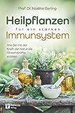 Heilpflanzen für ein starkes Immunsystem: Wie Sie mit der Kraft der Natur die Abwehrkräfte stärken