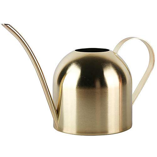 Enpato Small Watering Can Bonsai Stainless Steel Plant Water Pot for Indoor Office Plants and Garden Brass Long Spout, 15oz/450ml…(Golden)