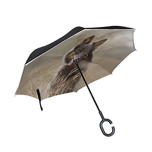 Parapluie inversable Compact Double Couche inversé Chien de Berger Compact Parapluie inversé Parapluie inversé Protection Anti-Vent compacte Coupe-Vent pour la Pluie avec poignée en Forme de C