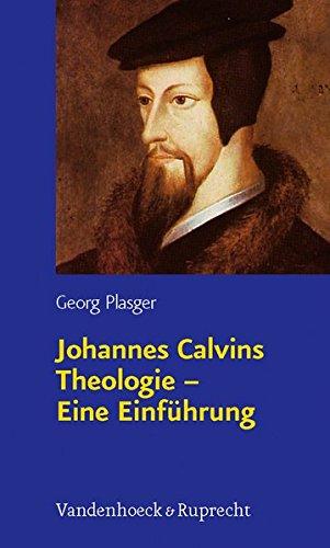 Johannes Calvins Theologie - Eine Einführung