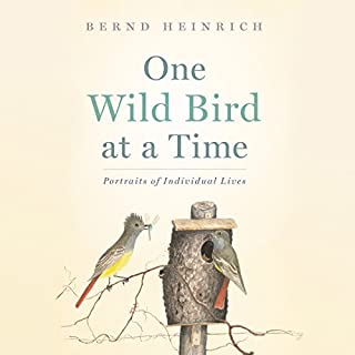 One Wild Bird at a Time cover art