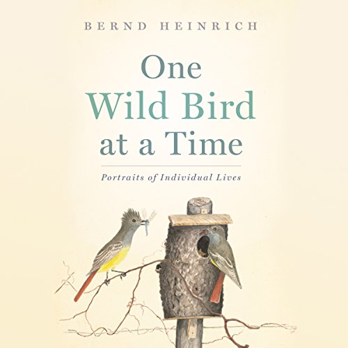 One Wild Bird at a Time audiobook cover art