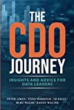 The CDO Journey: Insights and Advice for Data Leaders