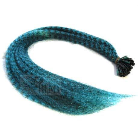 RemyHaar.eu - Bunte Feder Strähnen Feather Extensions Grizzly I-Tip Kunsthaar 0,4g Farbeffekte Haarverlängerung - Türkis Feder, 10 Strähnen