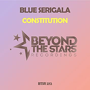 Constitution (Original Mix)