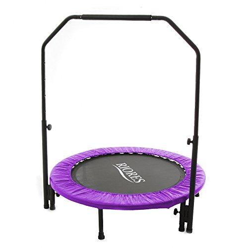 RIORES (リオレス) トランポリン 102cm 手すり付き(補助棒付) 耐荷重110kg 家庭用 静音設計 大人用 子供用 (パープル)