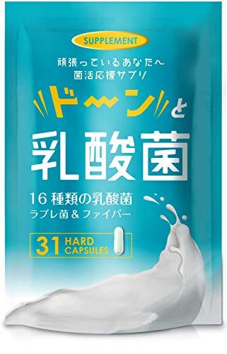 ドーンと乳酸菌 サプリメント 乳酸菌 ビフィズス菌 オリゴ糖 31粒