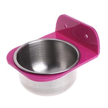 Qianqian56 Mangeoire à oiseaux en acier inoxydable pour cages, poulailler, chien, perroquet