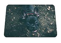 26cmx21cm マウスパッド (犬のブルドッグの銃口) パターンカスタムの マウスパッド