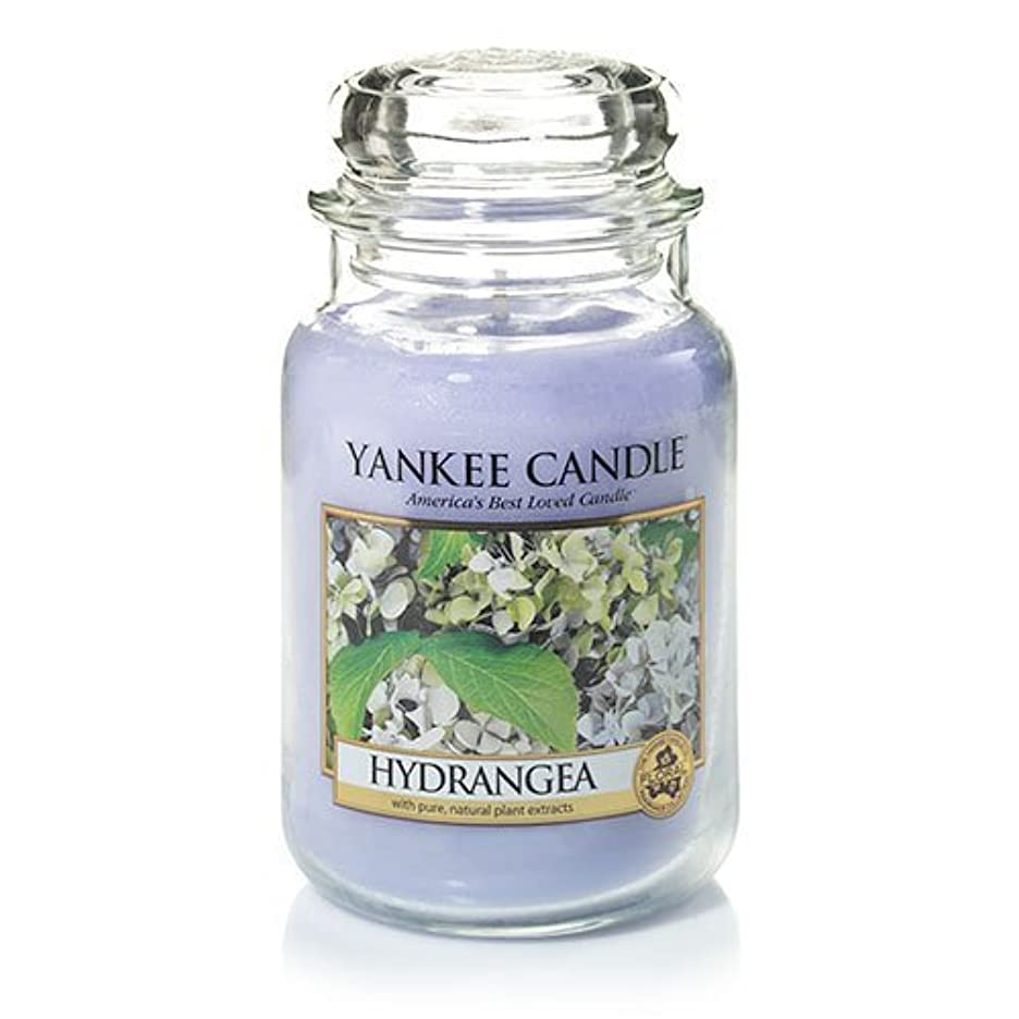 シロクマ外側パーチナシティYankee Candle Hydrangea Large Jar Candle、新鮮な香り