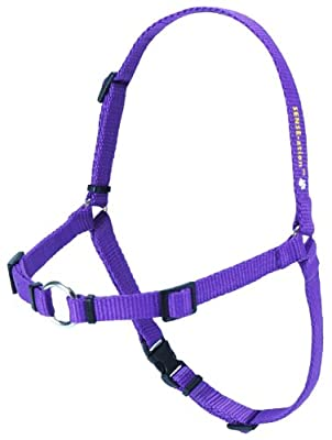 SENSE-ation No-Pull Dog Harness