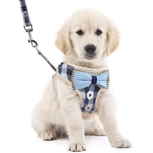 DHGTEP Arns y Correa para Perros Arns Ajustable con Malla Transpirable Bonito Arns a Cuadros con Pajarita para Perros (Color : Blue, Size : Medium)