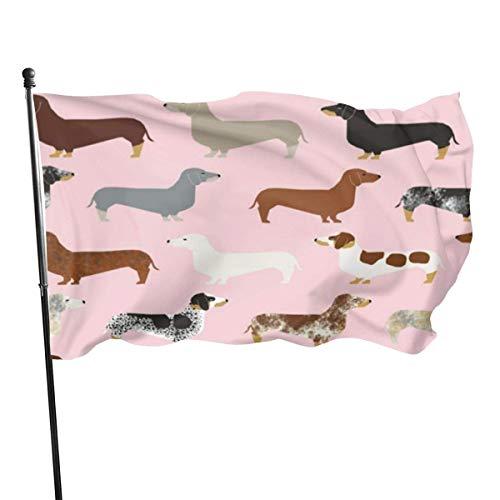 Hao-shop hondenmand voor alle rassen, decoratief, lichte kleur, decoratie voor binnen en buiten