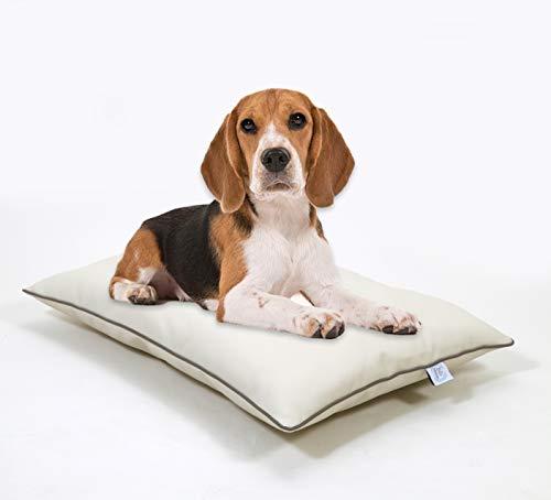 BIBI RELAX COJIN para Perro | Cojín para Perros en Cuero ecológico de fácil Limpieza, Espuma Descanso y relajación Tanto en casa como de Vacaciones, para Perros pequeños y medianos.100% Made in Italy