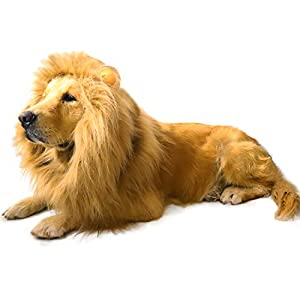 AQCSS Dog Lion Mane-Christmas Lion Costumes Adjustable Lion Mane with Ears Dog Wig and Tail for Medium or Large Sized Dogs