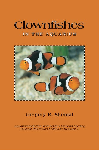 Clownfishes in the Aquarium (English Edition)