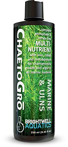 Brightwell Aquatics Chaeto GRO - Multi-Nutrient Supplement for Chaetomorpha Growth and Vigor in All Marine Aquariums, 250 ML